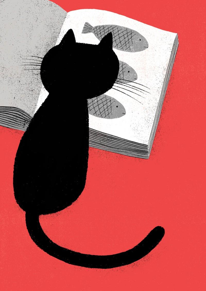Capa-Catálogo-Gato
